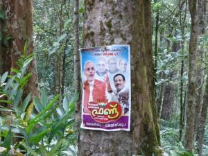 Modi poster in Jungle