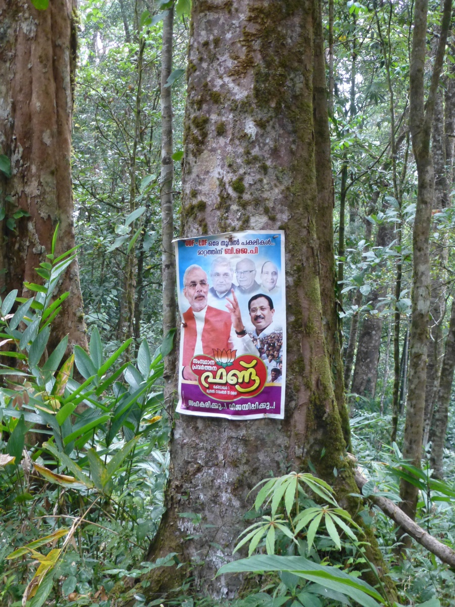 Modi poster in Jungle