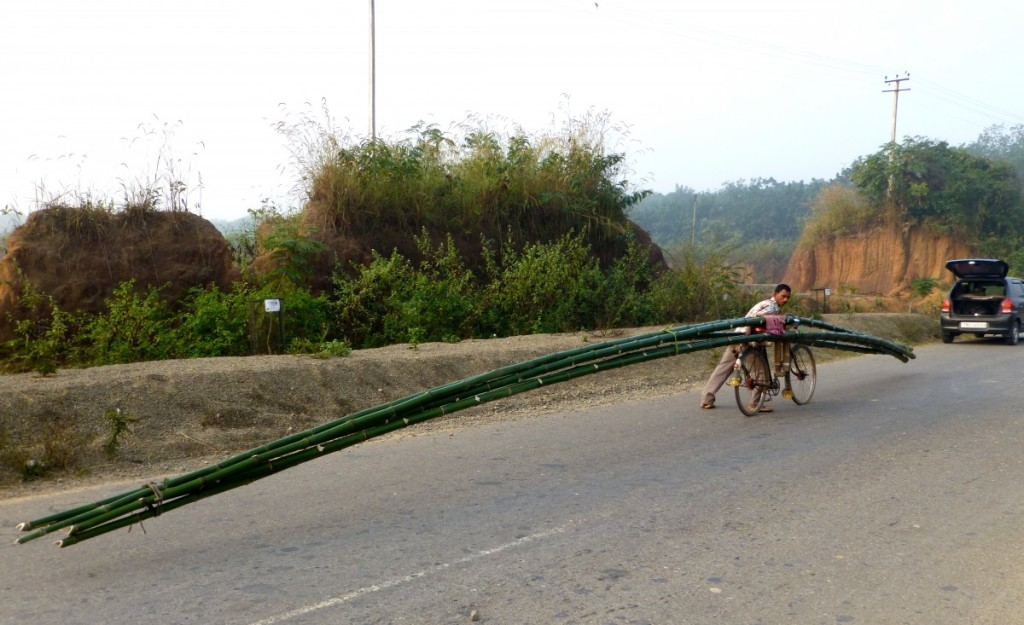'How the heck do you balance that weight - and those incredibly long bamboos - on a bicycle that is barely five feet in length?'