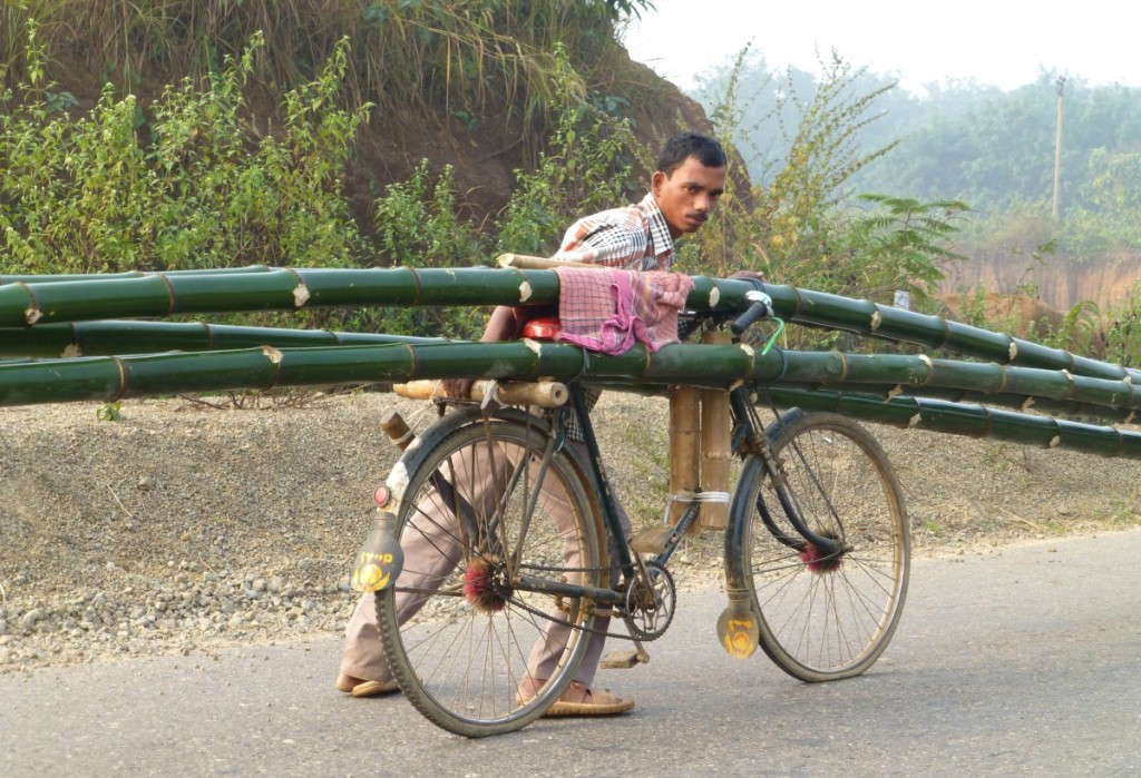 Ratan Biswas with bicycle loaded with bamboos