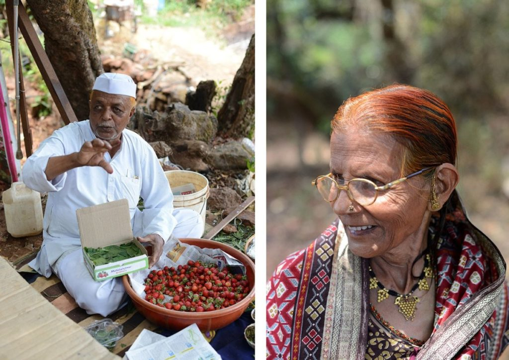 strawberry farmers from Maharashtra
